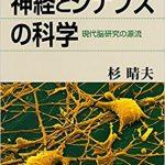神経細胞での情報の流れ